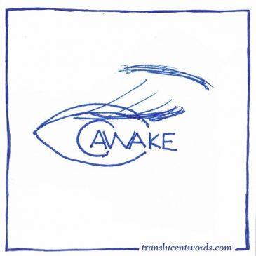 "One-Word Journal Prompt: ""Awake"""