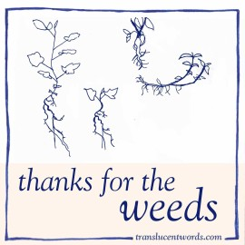 Thanks for the Weeds